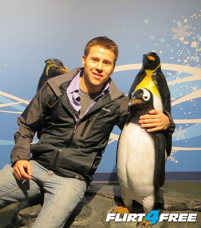 warning: penguin is not real :(